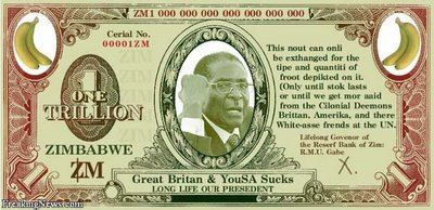 mugabe_new_currency.jpg